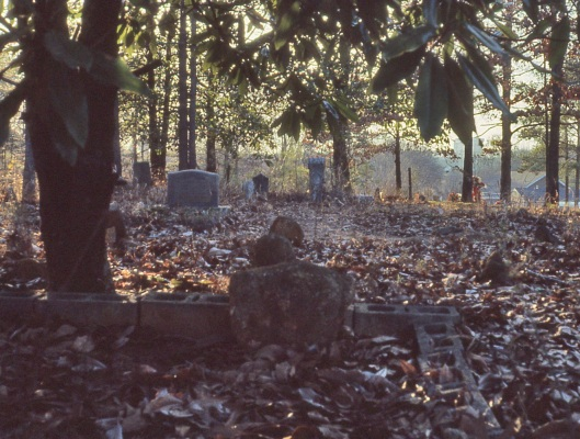 This is what Hart Cemetery looked like in 1985. Photo courtesy of Tomitronics.com.