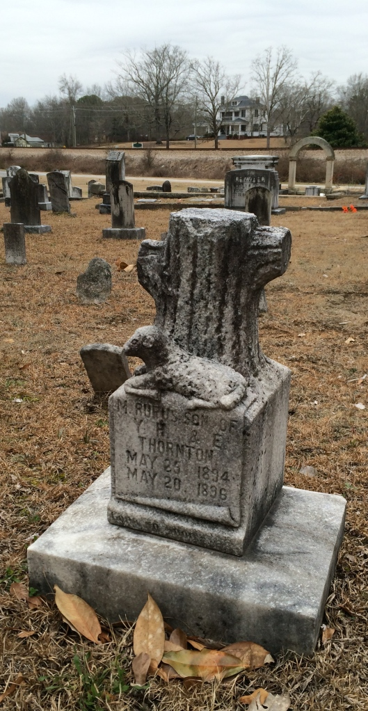The grave of M. Rufus ? has two symbols. The tree stump signifies a life cut short while the lamb symbolizes the innocence of childhood. He is buried in Shadnor Baptist Church Cemetery.