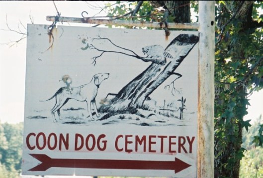 Located in Northwest Alabama, the Key Underwood Coon Dog Memorial Cemetery was established in 1937 when a man wanted to honor his faithful dog, Troop. Only coon dogs are allowed to be buried at the cemetery. Photo courtesy of coondogcemetery.com.