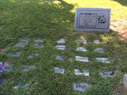 E.H. Rice loves cats because he or she has honored at least 13 with memorial plaques.