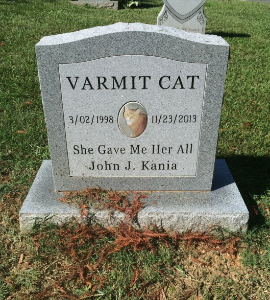 Varmit Cat, who lived to be 15, was the apple of her owner's eye.