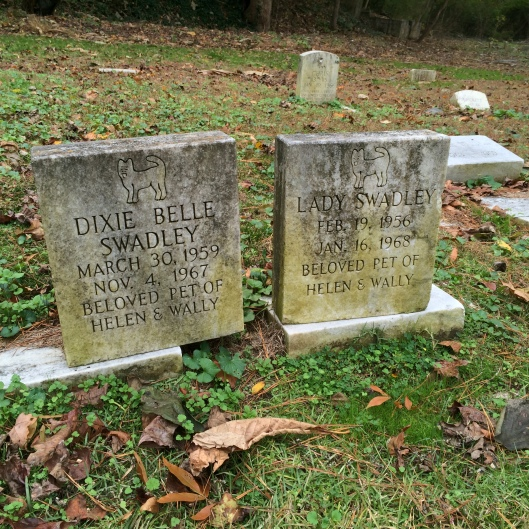 Gravestones for cats Dixie Belle and Lady Swadley. It's sometimes hard to tell what kind of pet it is from just the name alone.