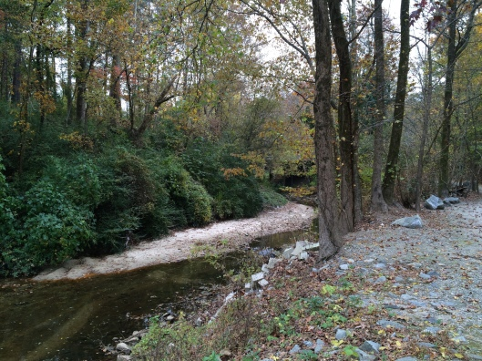 Procter Creek runs through Pet Heaven Memorial Park. You can see the highway bridge from the driveway.