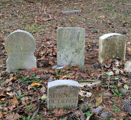 All of these pets were buried here at some time before 1950, at a time when pet cemeteries were unheard of.