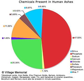 Human cremains are made up of a mixture of different chemicals, but most of it is phosphate with calcium coming in second. Photo courtesy of VillageMemorial.com.