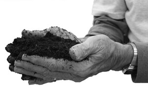 """Using the compost that came from the body of a loved one is a topic that excites some but makes others uncomfortable. Especially if it involves edible plants rather than ornamental flowers. Spade quipped, """"""""People love the idea of growing trees,"""" she said. """"They get really squeamish with tomatoes."""""""