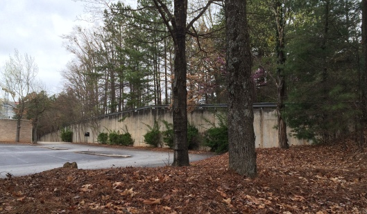 The Martin Cemetery is in the woods behind that guard rail. I took the picture from the parking lot of an abandoned office building. I wouldn't recommend climbing around the side like I did.