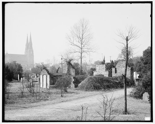 This undated photo of Colonial Cemetery shows how it probably looked when the City managed the property. They went out of their way to obscure the brick tombs with plant life.