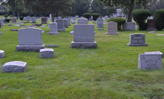 The empty space to the left of the Faber marker and in front of the Anderson marker is where Minnie, James and Paula are buried.