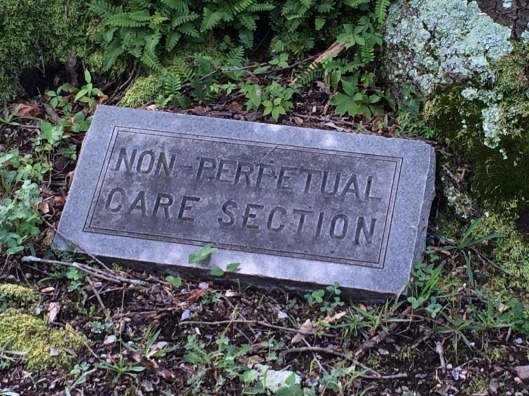 Non-perpetual care section is a designation I often see at old cemeteries. Years ago, the concept of putting aside funds for the upkeep and maintenance of graves did not exist as it does now.