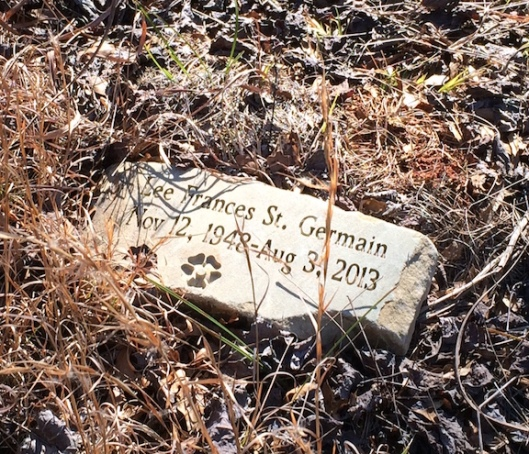 An example of a grave stone at Honey Creek. They all lie flat, not upright as in traditional cemeteries.