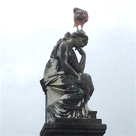 A falcon (I think) perches atop the monument of Hibernia Doughtery Berry. This is how it looked in 2015.