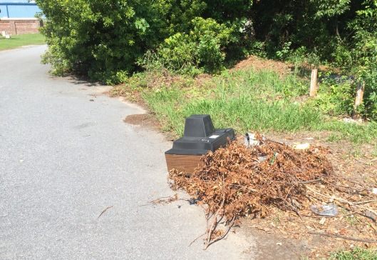 The streets around this part of North Charleston are often dumping grounds for trash and in this case, a dead television.
